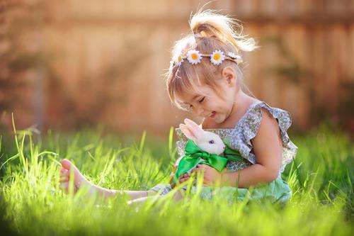konijn kopen - konijnen - konijnenvoer