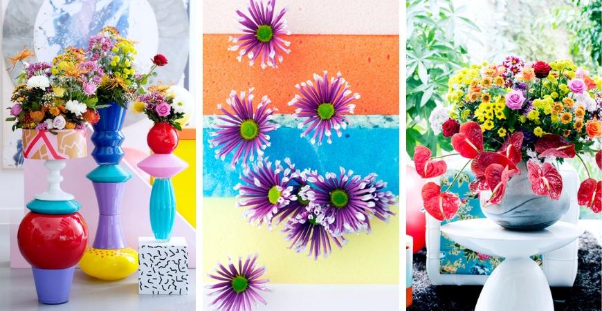 Chrysant - eenjarige tuinplant kopen