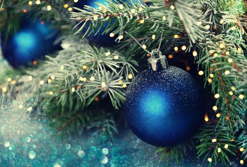 Kerstballen Kopen Tuincentrum Eurofleur