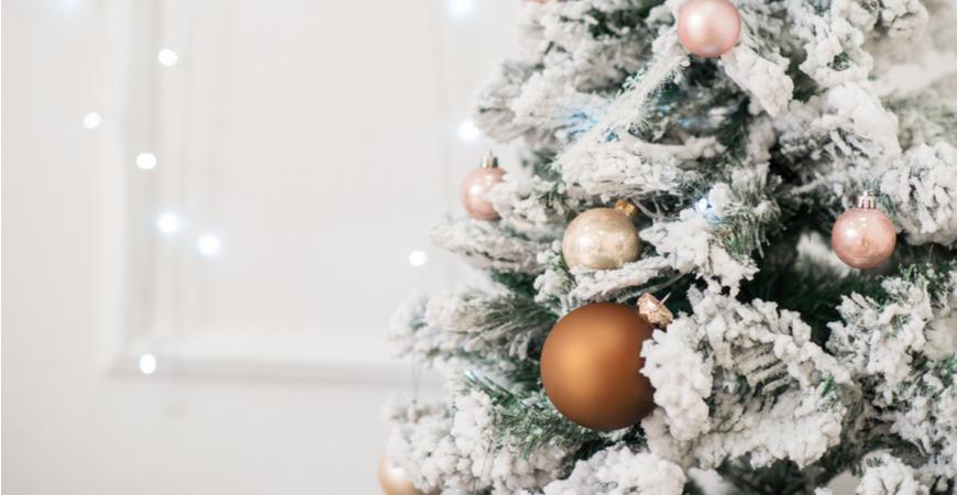 Kerstballen kopen | Tuincentrum Eurofleur